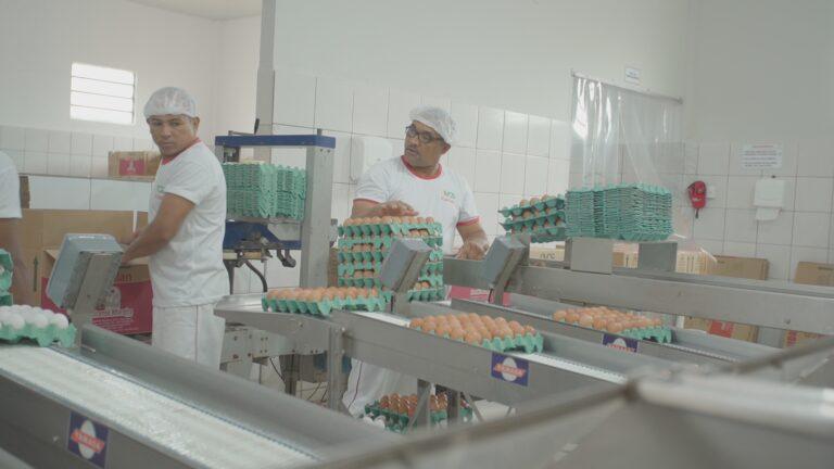 Piauí já pode vender produtos de origem animal para todo o país